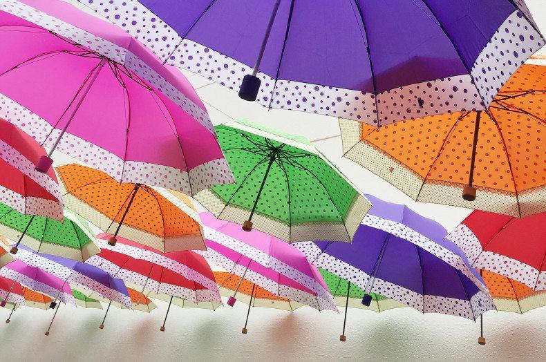 picnic-boulevard-shopping-traz-programacao-diversificada-nos-dias-15-e-16-de-outubro